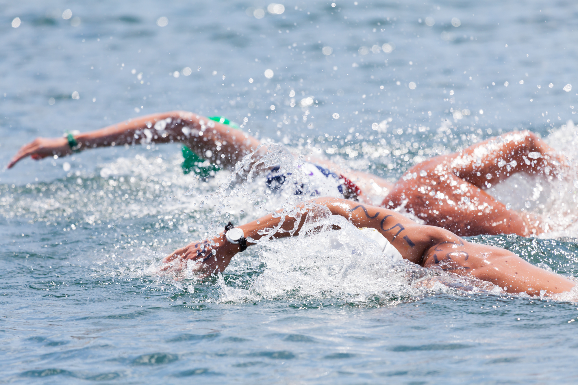 Open water swimming in the final